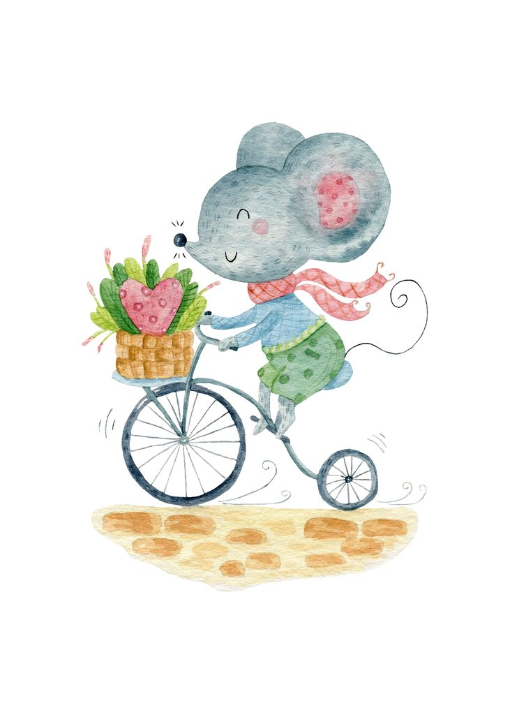 Mouse rides a bicycle