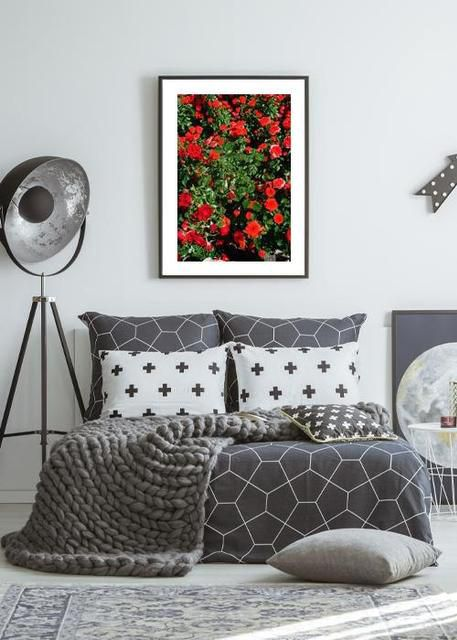 Roses Environment