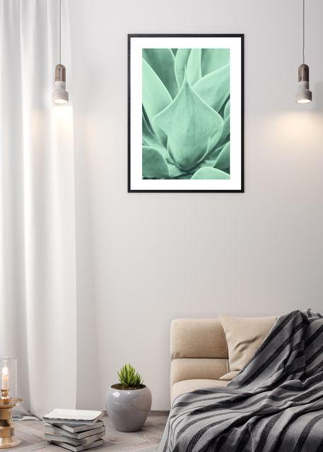 Aloe Vera Environment