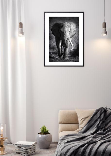 Elephant bull Environment