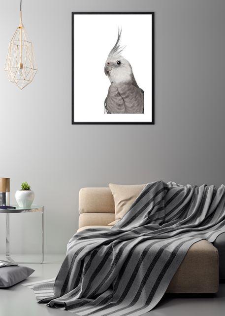 Alert parrot Environment