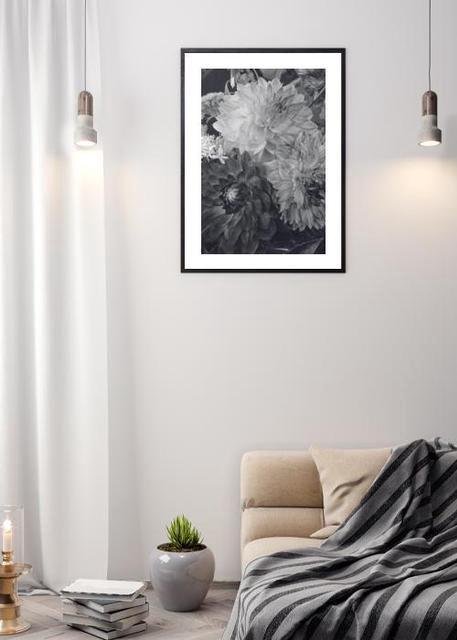 Hydrangea flowers Environment