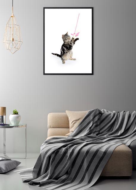 Kitten Environment
