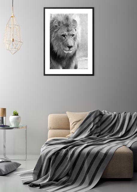Lion Environment
