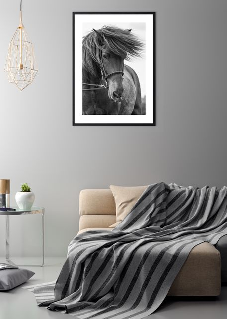 Portrait Horse Environment
