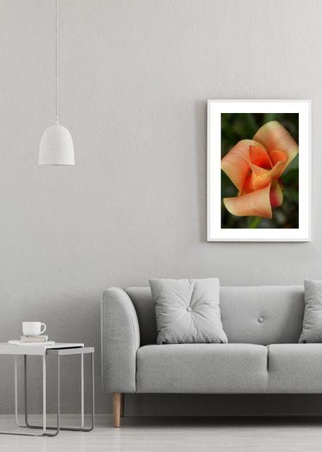 Orange Flower Environment