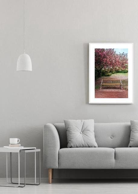 Sakura Environment