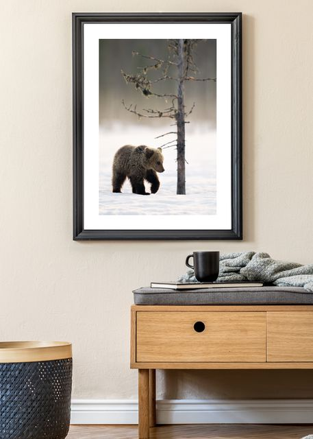 Bear in winter forest Environment