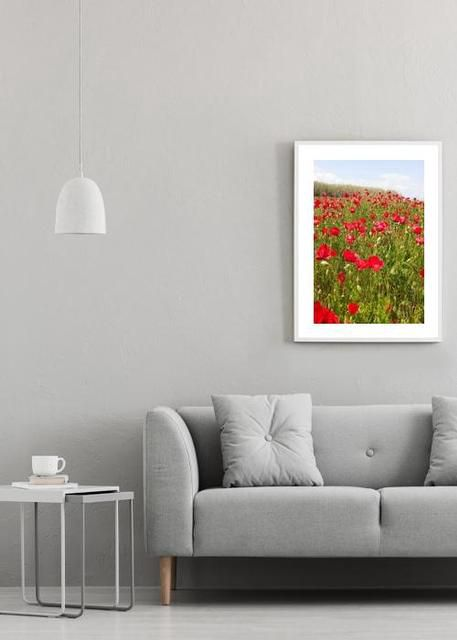 Poppies Environment