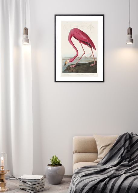 Pink Flamingo Environment
