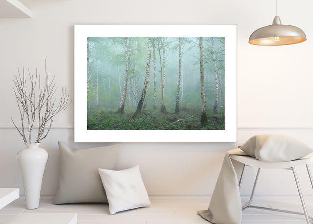Birch Environment