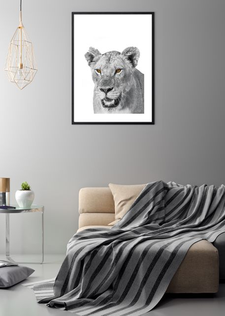 African lion Environment