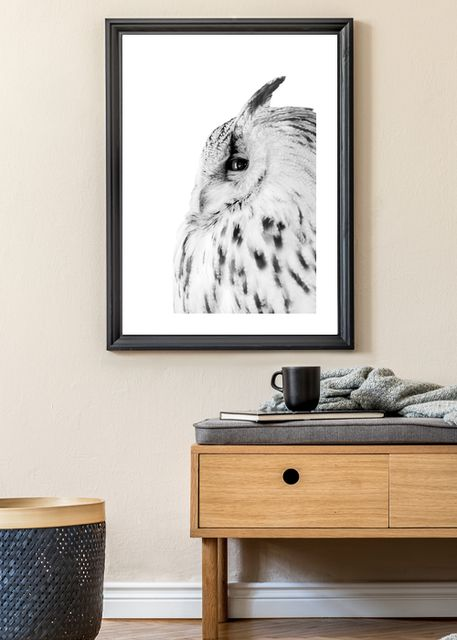 Eagle-owl Environment