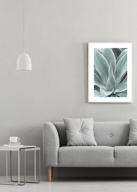 Agave leaf Environment