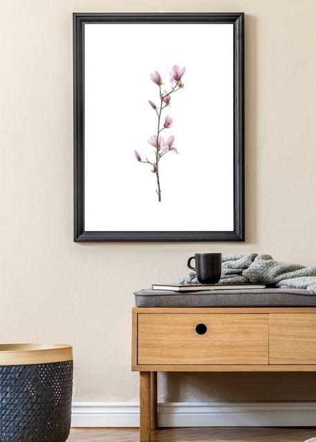 Magnolia flower Environment