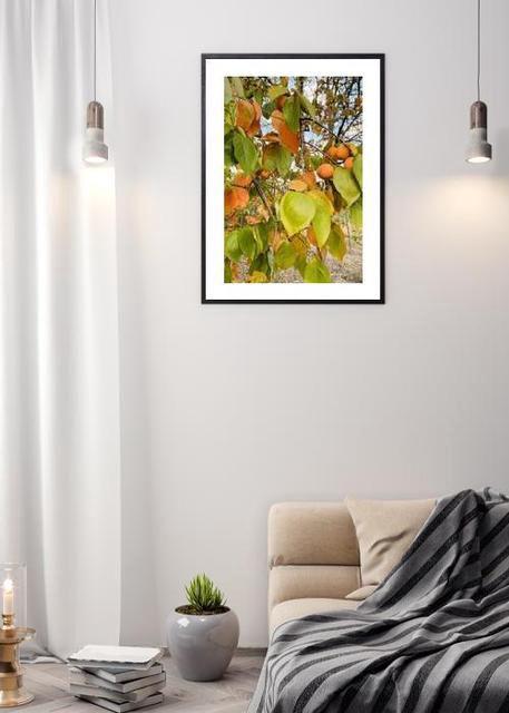 Fall Environment