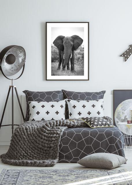Big elephant Environment