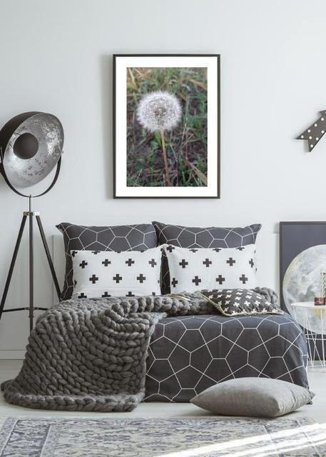 dandelion Environment