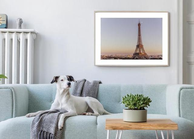 Tour Eiffel Environment