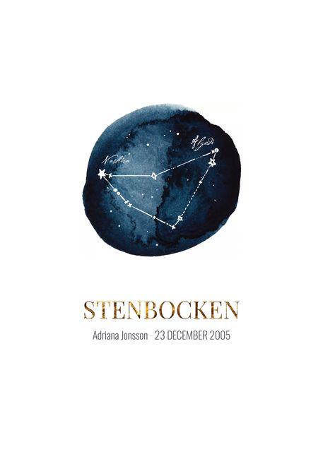 Stenbocken (egen text)