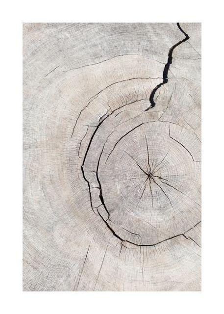 Pattern wood 2