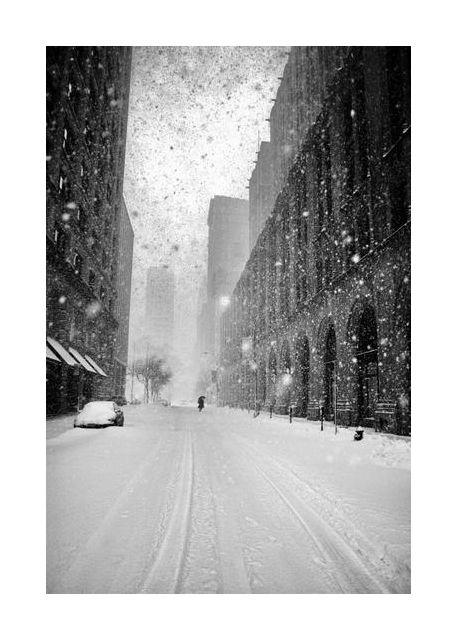 New York Walker in Blizzard