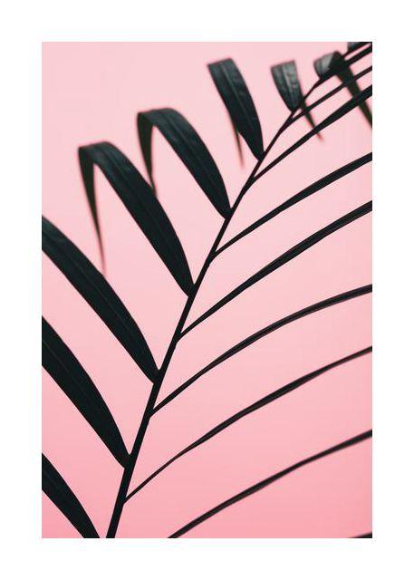 Graphic palm leaf 2