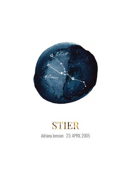 Stier (eigener text)