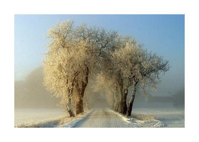 Winter  gateway