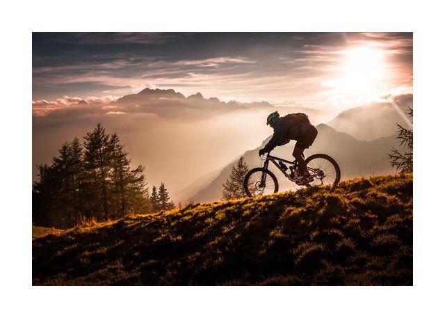 Golden hour biking