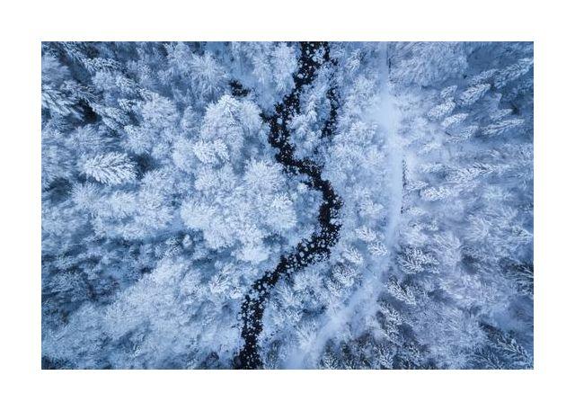A Freezing Cold Beauty