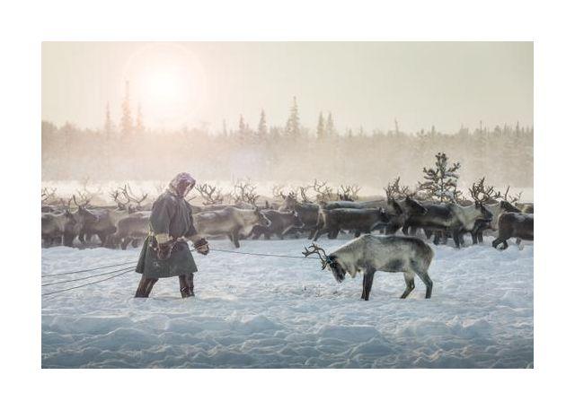 Hunting II