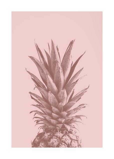 Pinapple Pink 05