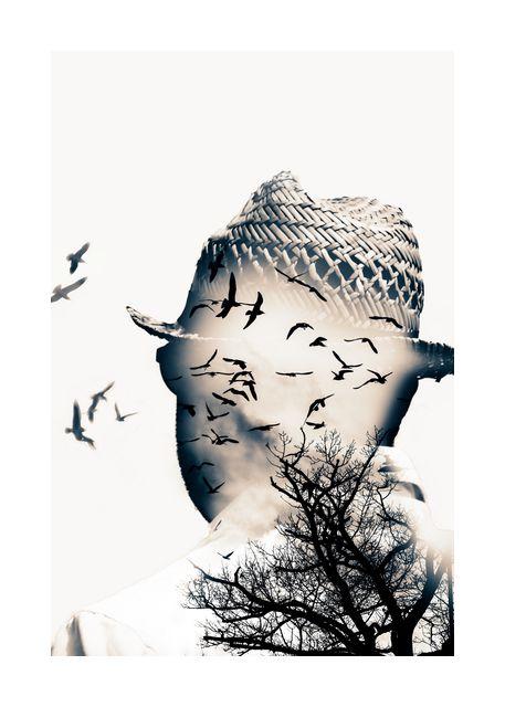 Free as a bird 2