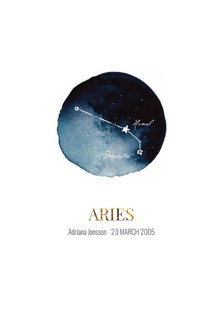 Aries (customizable)