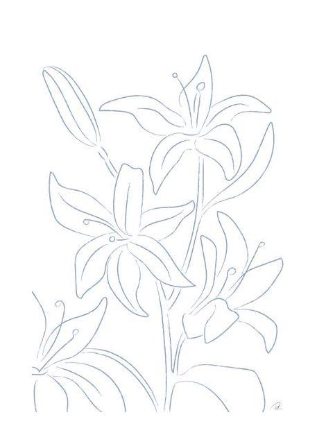 Lillies No 01