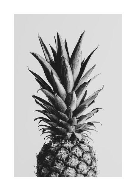 Pineapple Black a White 02
