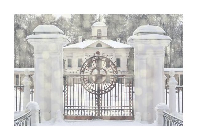 Gate in snow