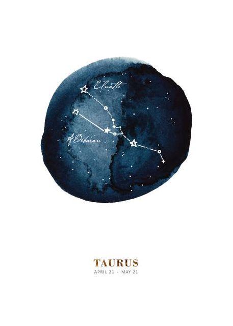 Zodiac Stier