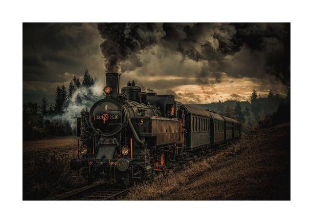Gold digger train