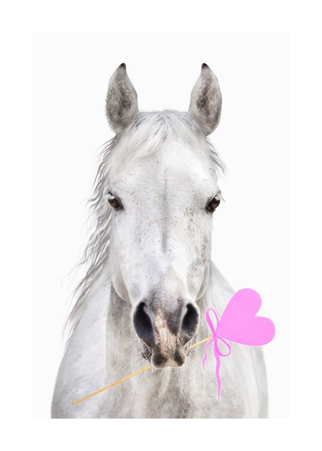 Horse with heart