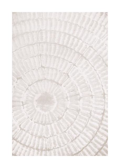 Pattern plate 1