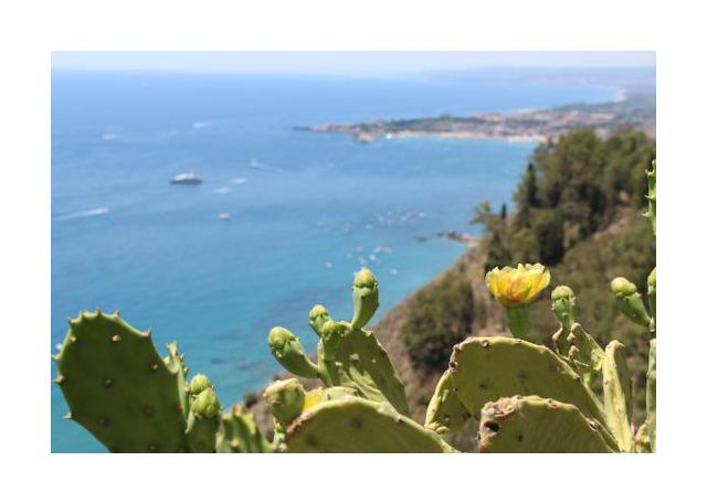 Taormina's view