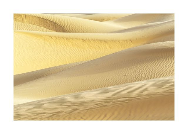 Dunes in yellow