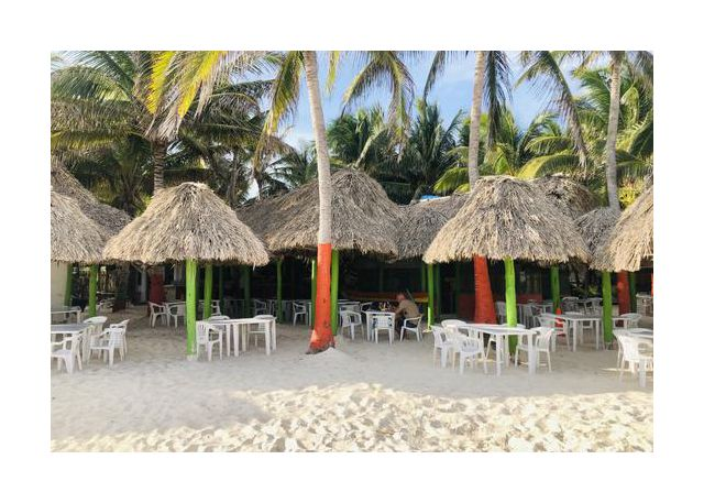 Mexico - wild beach