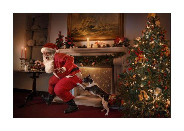 Santa was caught!