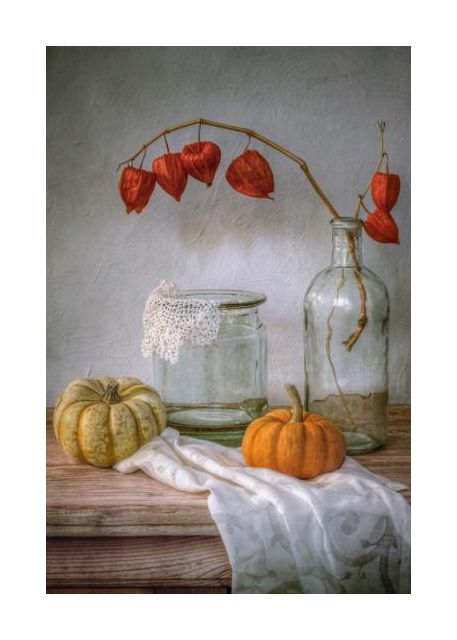 Still life with Physalis and Pumpkin