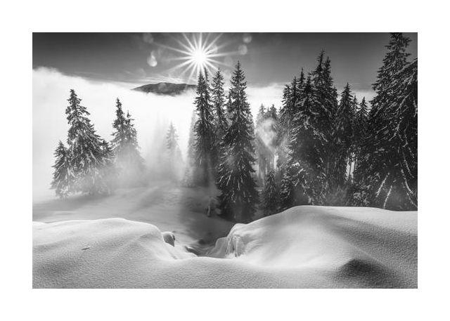A Winter Tale !