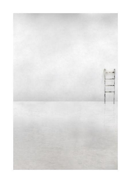 The social ladder