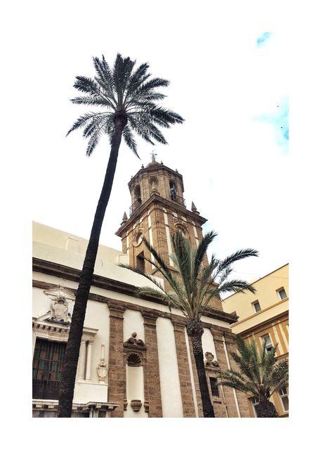 Looking up in Cadiz